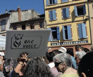 Marche climat Toulouse 8 août